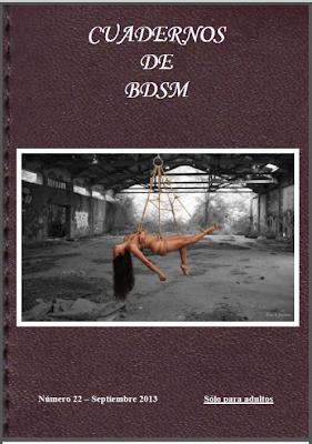 Cuadernos de BDSM 22