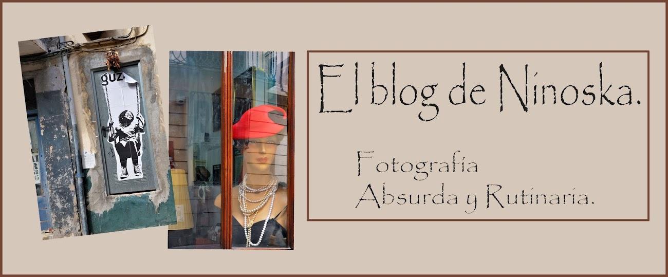 El Blog de Ninoska