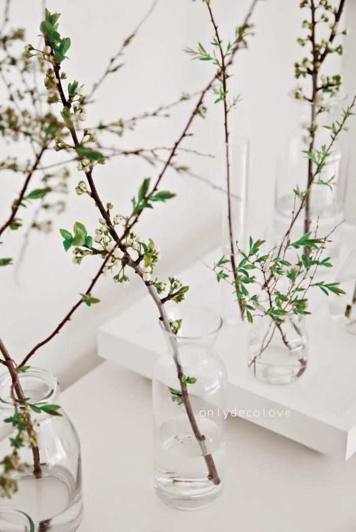 Ramas con flores en botes de cristal