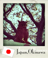 2010 Japan