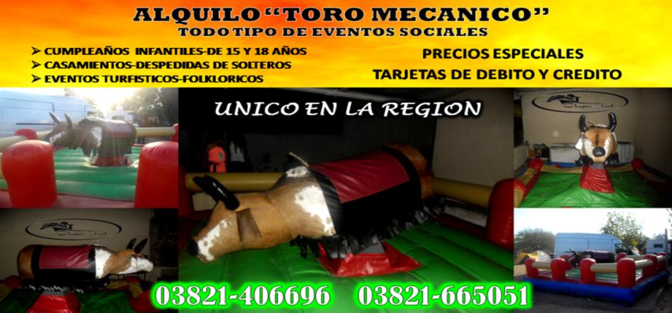 toro mecanico 2013