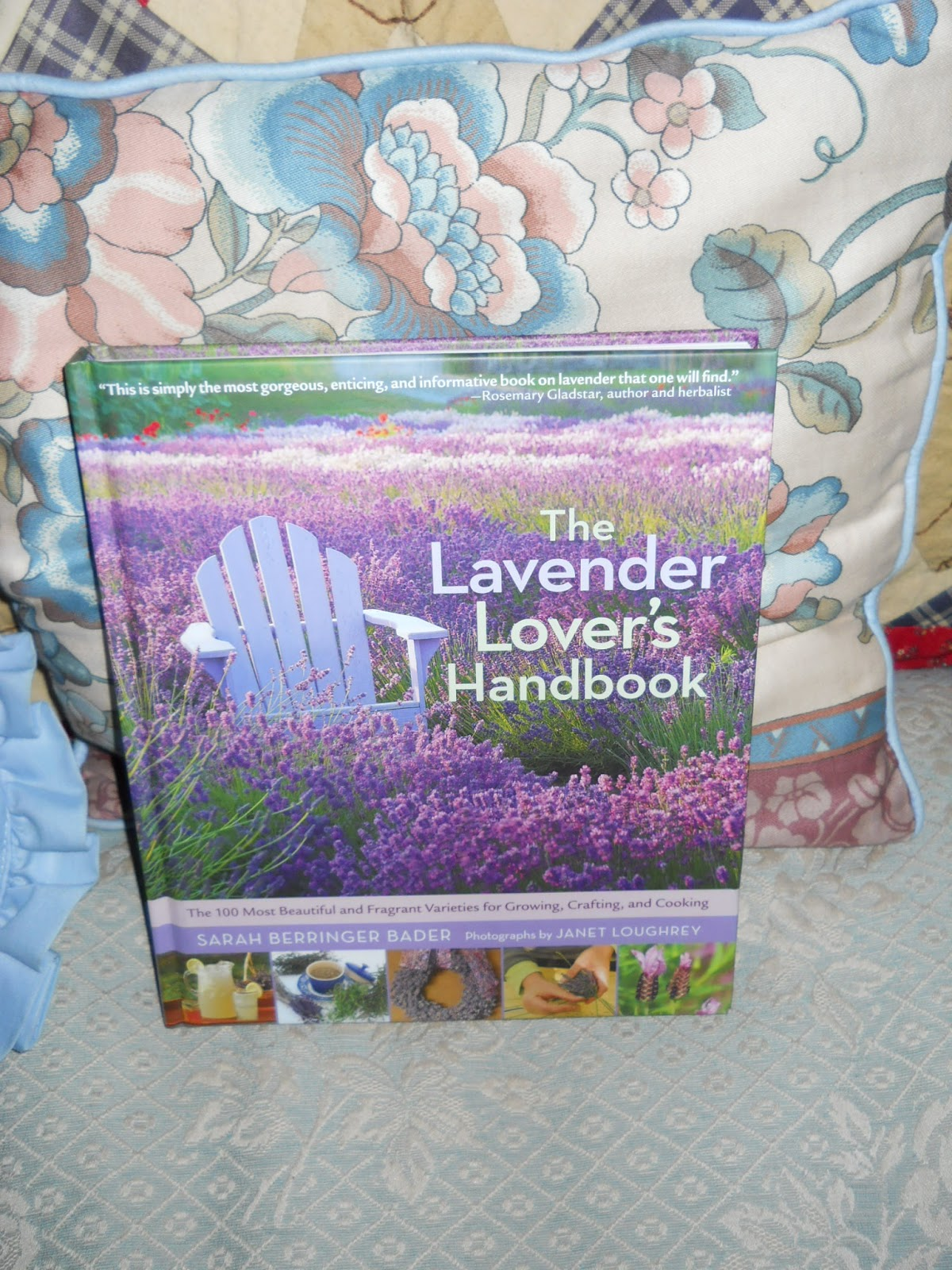 The 100 Most Beautiful and Fragrant Varieties for Growing The Lavender Lovers Handbook Crafting and Cooking