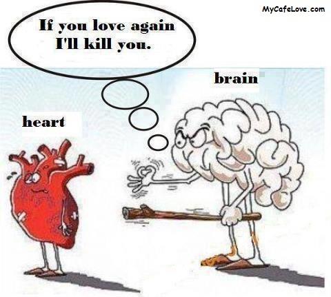 Brain Love Heart vs Brain in Case of Love