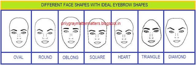 Oval Face Eyebrow Shape