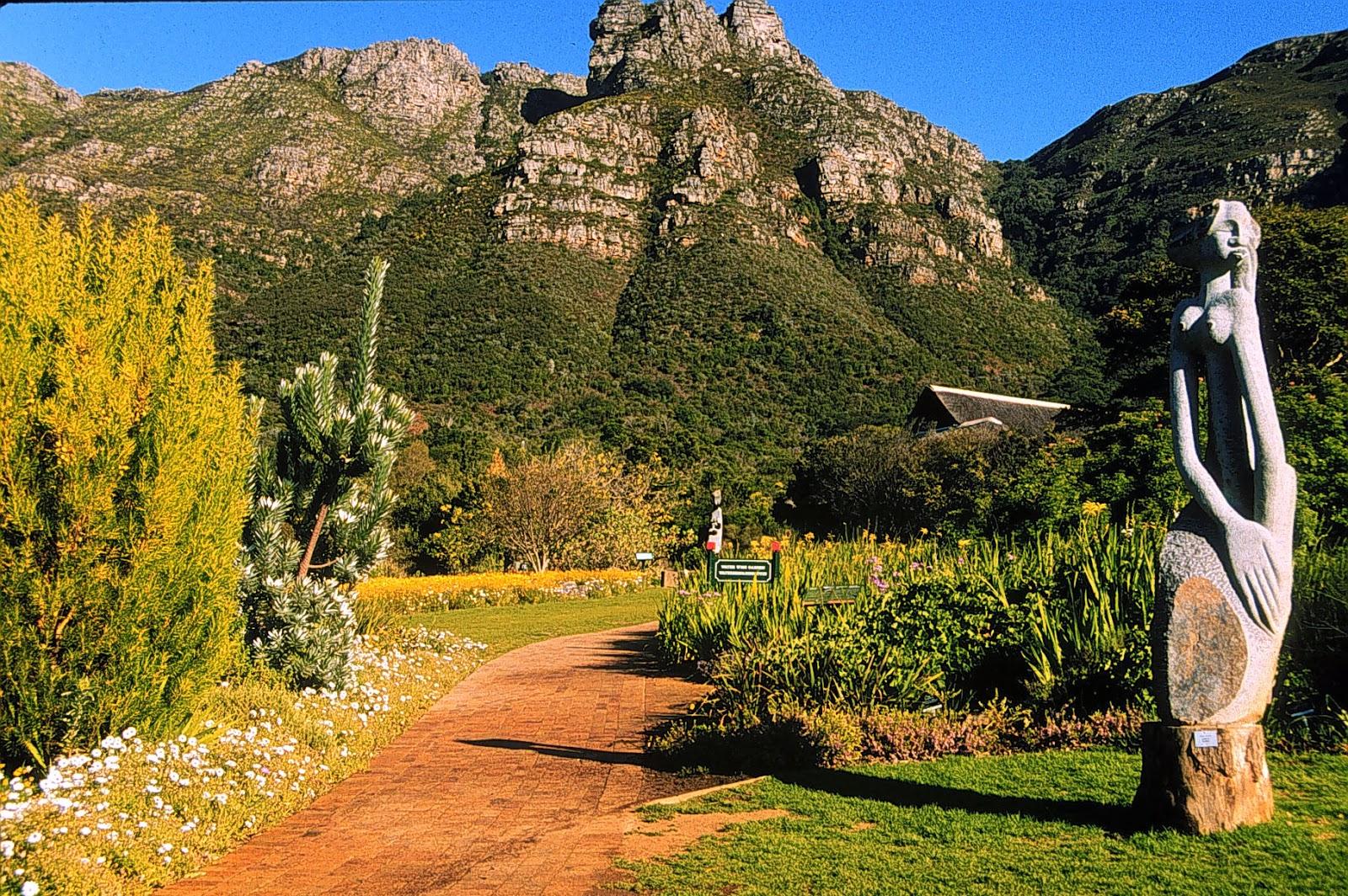 I Brake for Wildflowers!: South Africa 1. Kirstenbosch