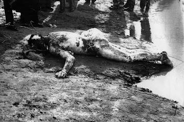 Il 10 marzo del 1960 il medico Aurelio Tafuri uccise il giovane amante della  sua amante