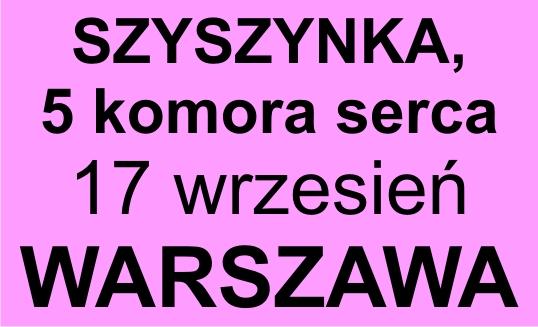 Szyszynka - warsztaty
