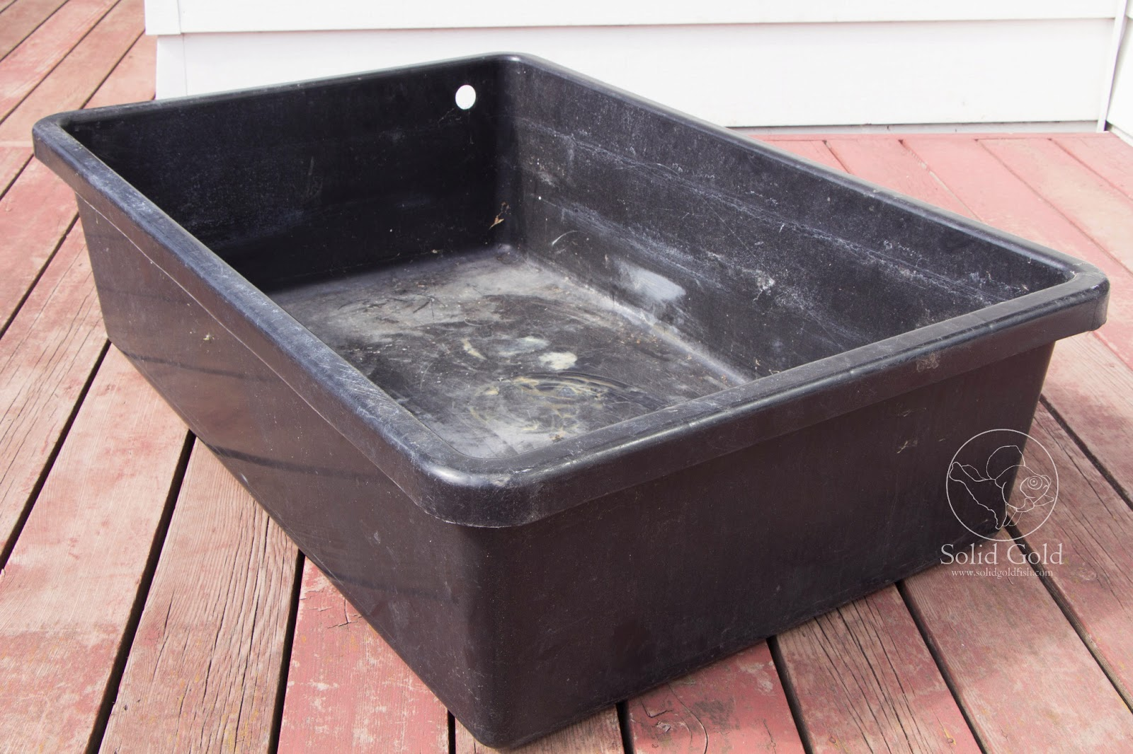 Laguna 60 gallon tub before after solid gold aquatics for Plastic pond tub