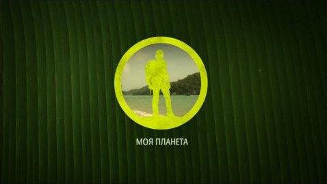 the branding source new logo moya planeta
