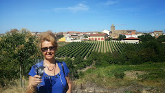 """La Rioja, """"Tierra con nombre de vino"""", """"Enlace al Blog"""""""