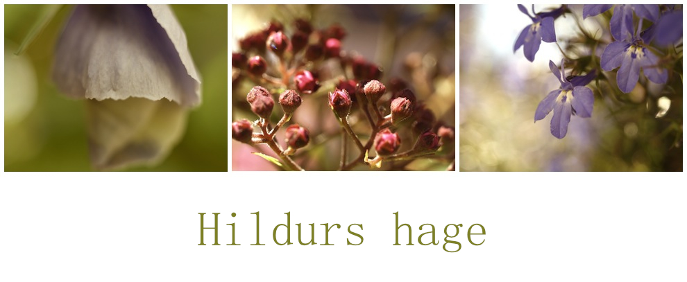 Hildurs hage