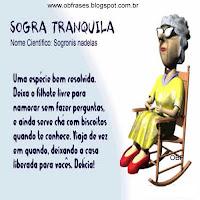 Frases de Sogras