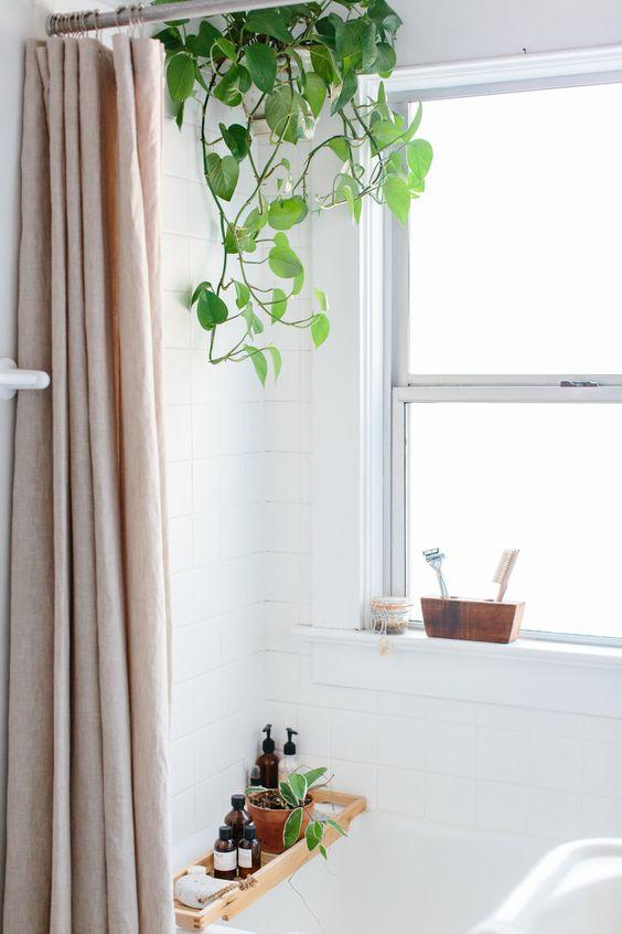 Plantas colgantes en el ba o deco original mi casa es feng - Plantas en el bano ...