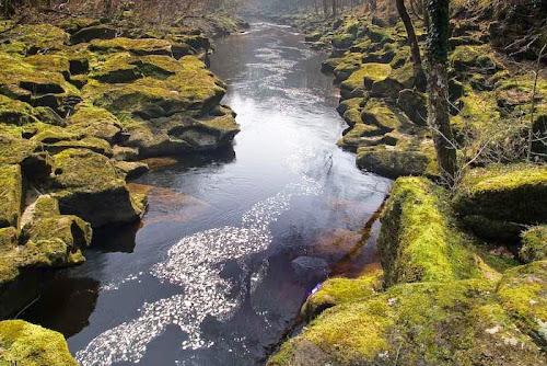 Bolton Strid, Yorkshire, Inglaterra