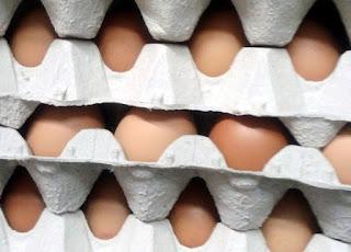 Huevos marrones en cartones