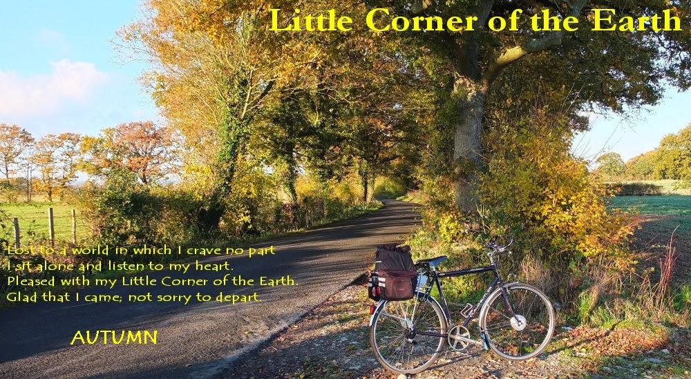 Little Corner of the Earth