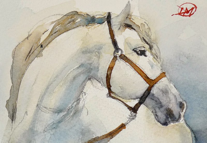 White horse by David Meldrum