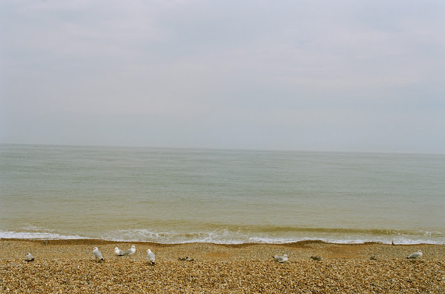 Gull School Deal Beach Kent