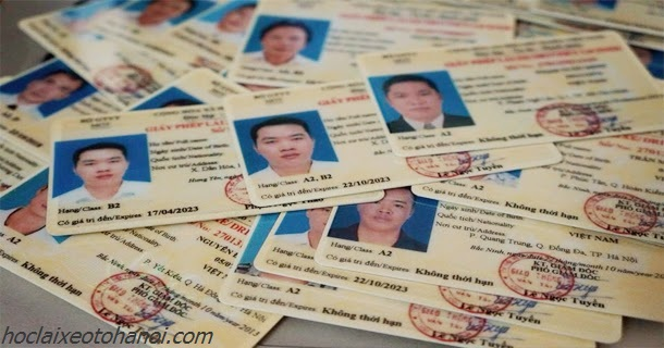 Các Thủ Tục Đổi Bằng Mới, Cấp Lại, Gia Hạn GPLX Việt Nam & Quốc Tế