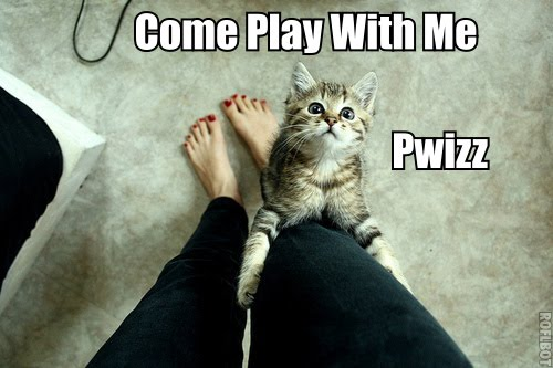 Come Play With Me pwizz