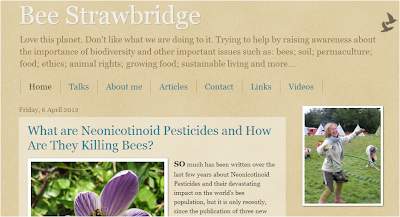 Brigit Strawbridge blog