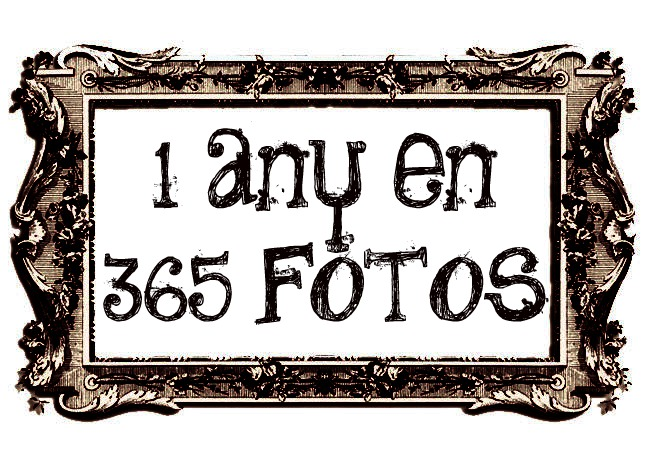 1 any en 365 fotos