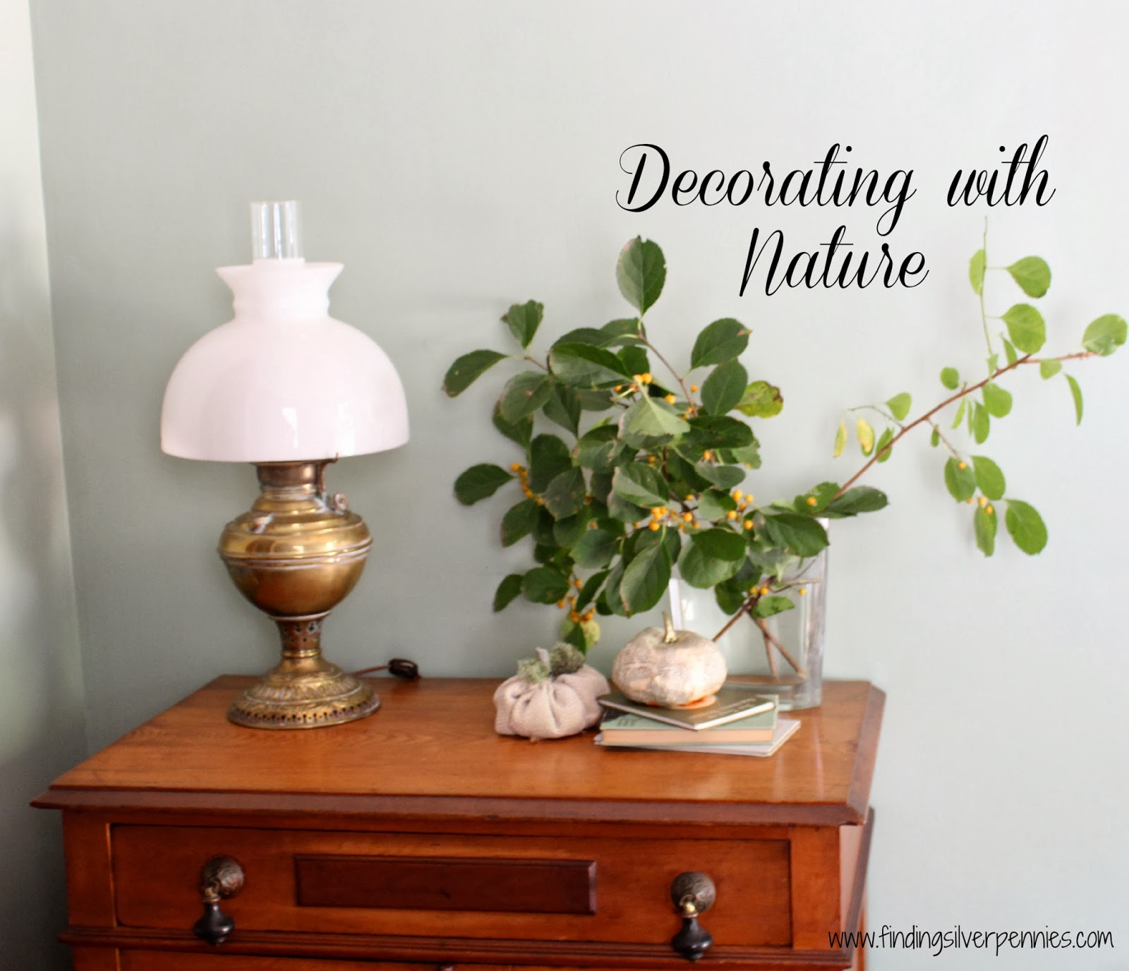 Decorating with Nature - Finding Silver Pennies