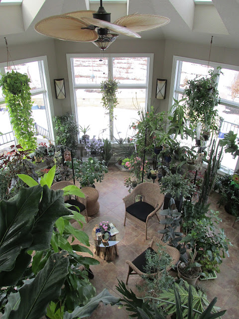 Radler's sunroom filled with plans