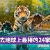 带孩子去地球上最棒的24家动物园