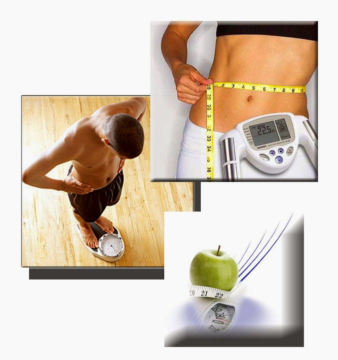 Eliminar grasa del abdomen rapidamente alimentar mascota con