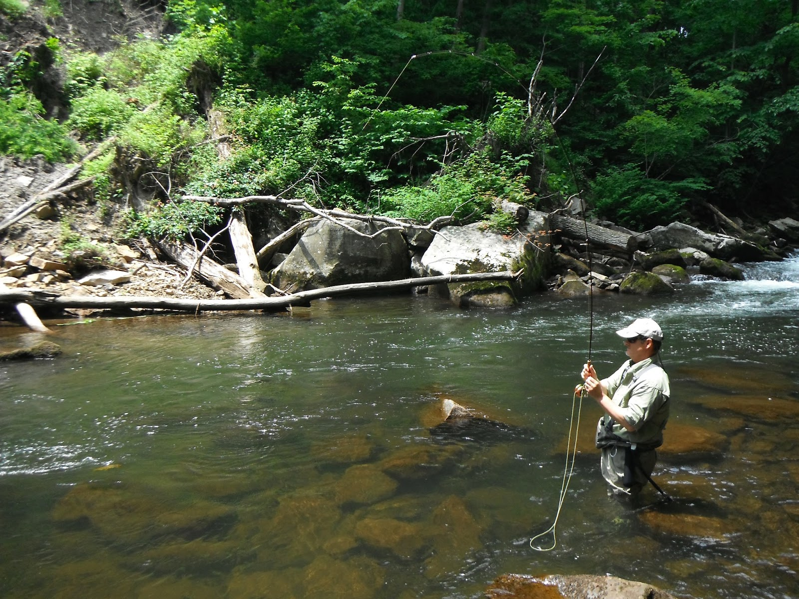Western maryland fly fishing bug soup on the savage tailwater for Md trout fishing