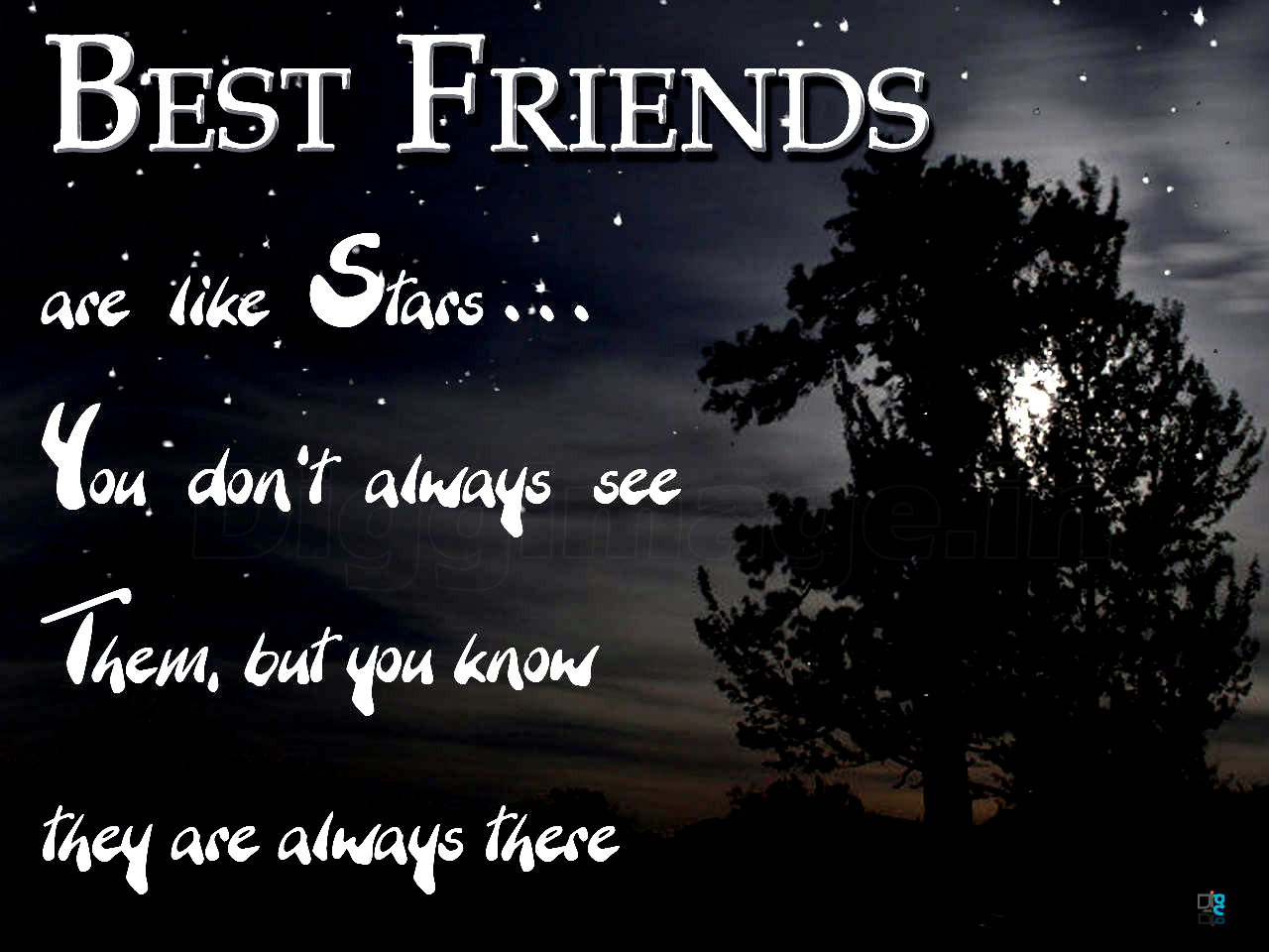 Quotes About Best Friends You Dont See Much : Best friends are like stars you don t always see them