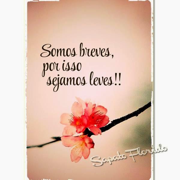SOMOS BREVES!