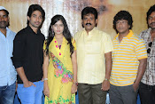 Cut Chesthe Movie Press Meet Photos-thumbnail-4