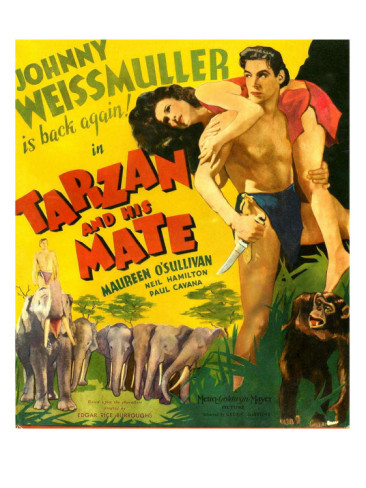 "fx: ""Me TarzanYou Jane"": Mattes and Effects from the MGM series"
