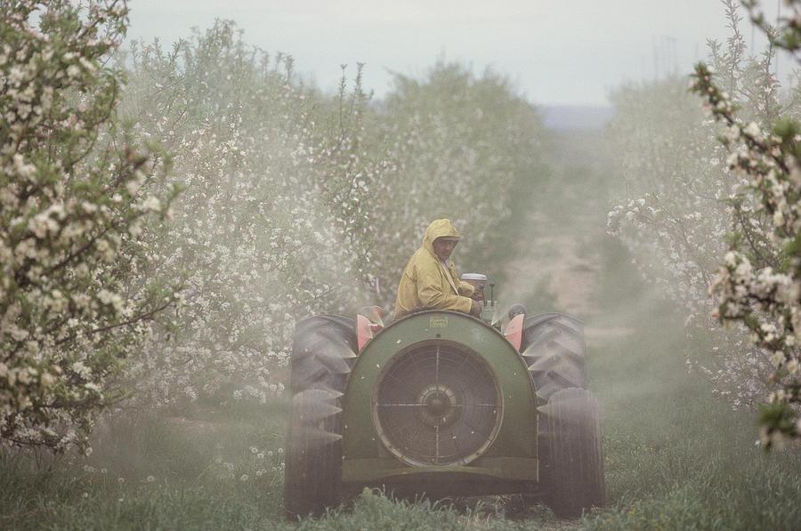 Fruit Tree Sprayers Part - 25: Help Pesticide Action Netork Rid Us Of Chlorpyrifos