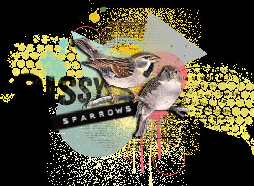 Sissy Sparrows