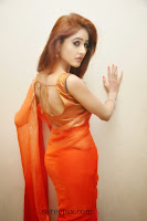 Sony-charishta-transparent-saree