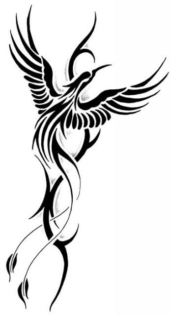 Pin ave fenix tribal phoenix tattoos tatuajes de on pinterest for Fenix tribal tattoo