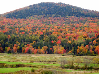 Beautiful fall colors on Route 2 in Vermont