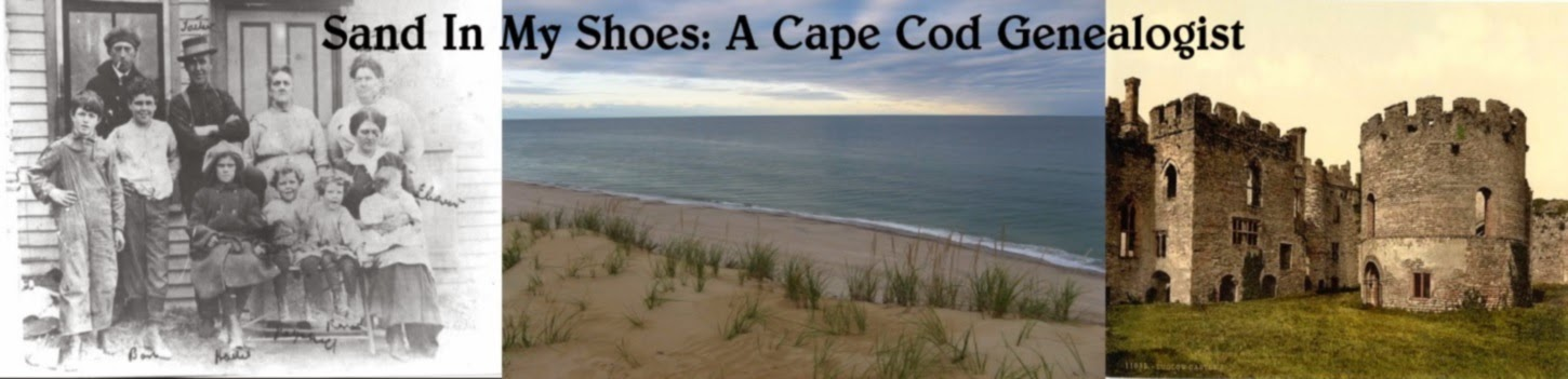 Sand In My Shoes: A Cape Cod Genealogist