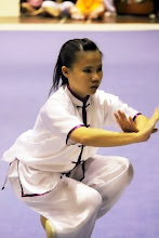 Wushu is my life :)