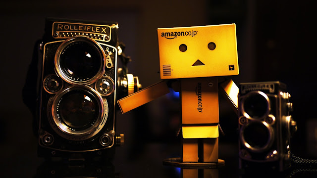 Amazon Danbo and Old Rolleiflex
