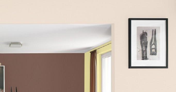 Decoraci n paredes de salas frescos decoraci n del hogar for Todo el diseno del hogar