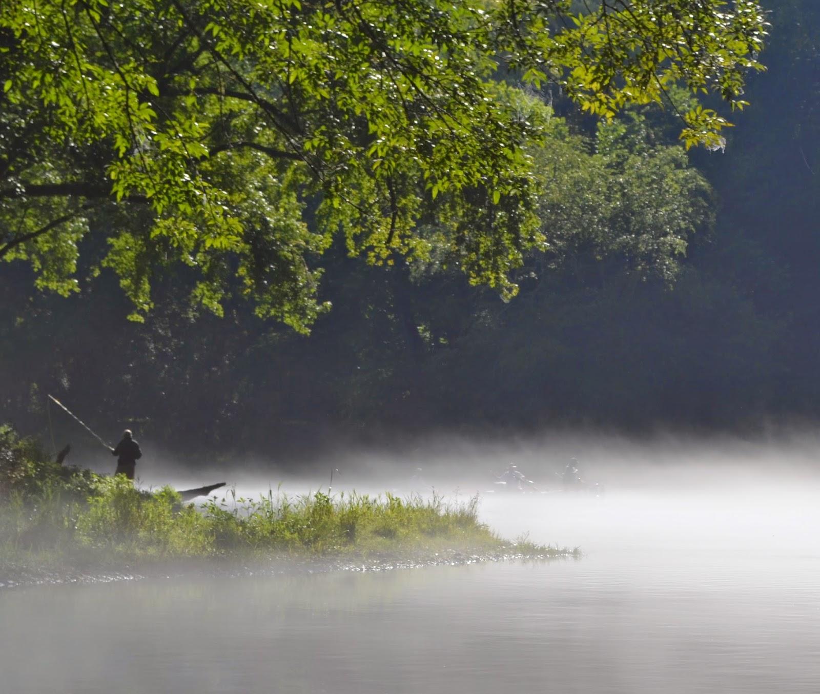 Southeastern fly elk river fishing report for Elk river fishing