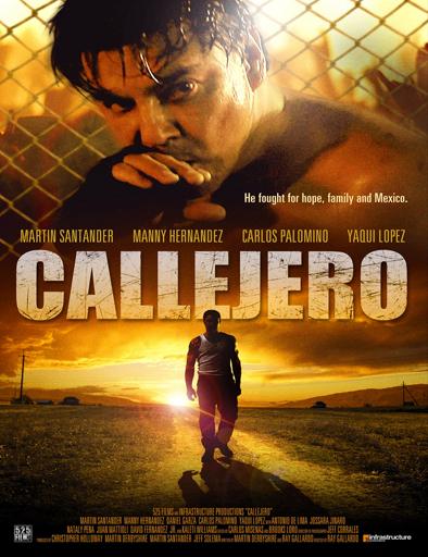 Ver Callejero (2015) Online