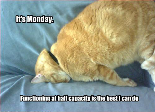 Its Monday - Functioning at Half Capacity Is The Best Thing I Can Do