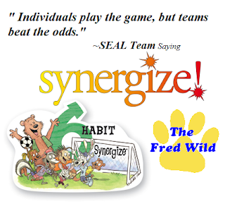 leader in me synergize