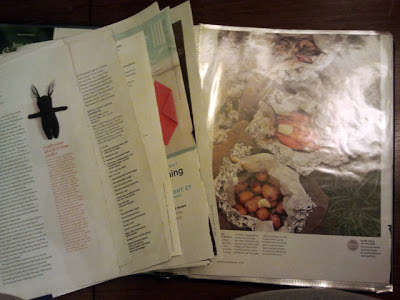 Open Binder of Organized Magazine Pages