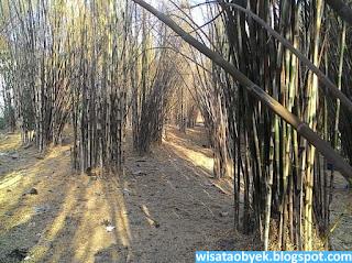 taman bambu keputih surabaya